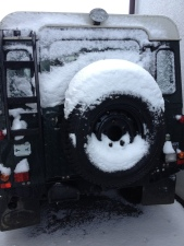 Landy Schnee rear